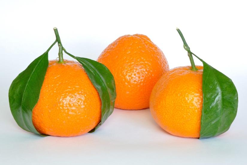 Mandarin_Oranges_(Citrus_Reticulata)