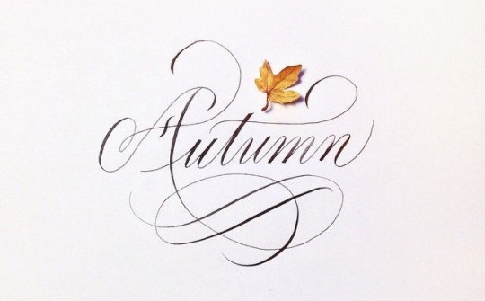 Copy of Autumn